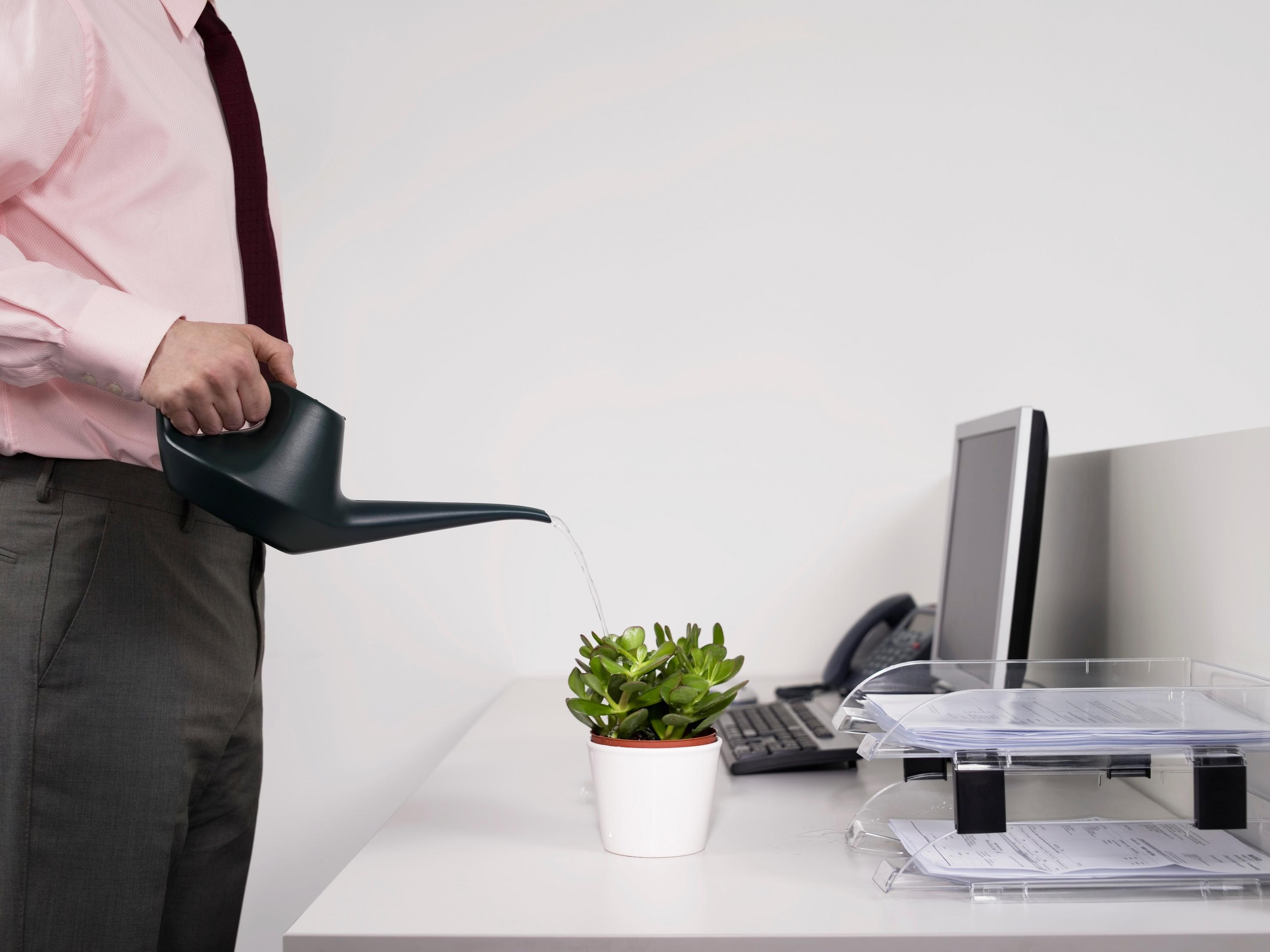 Oficina publica saludable cuidar el medio ambiente desde for Oficina medio ambiente