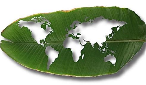 La-reunion-en-Bangkok-de-la-ONU-busca-acuerdos-para-combatir-el-cambio-climatico