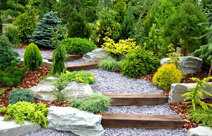 consejos para crear tu propio jardín   sustentabilidad