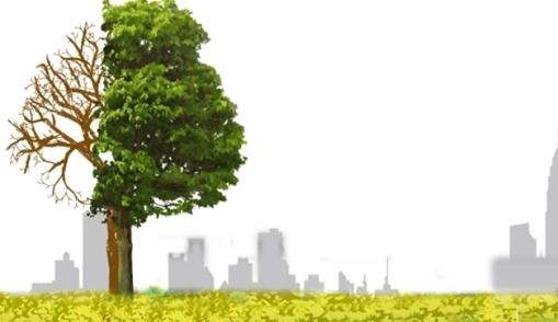 chilango-sustentable_1