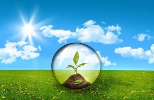 componentes-del-medio-ambiente