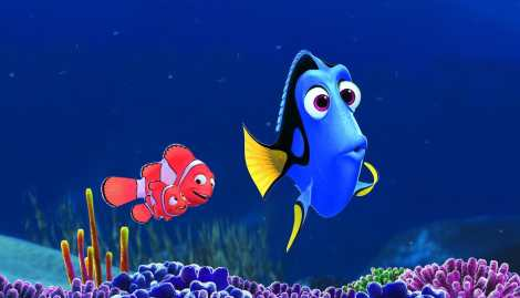 you-ll-find-everything-you-hoped-for-in-this-new-finding-dory-trailer-dory-disney-pix-988588