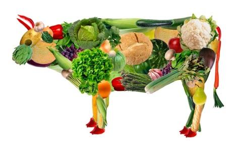 Vaca-vegana