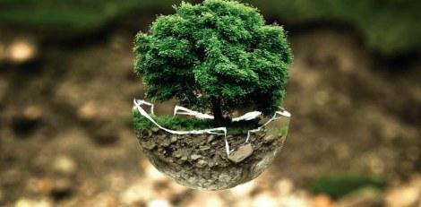impacto-ambiental-ciudad-celeste-1770x870
