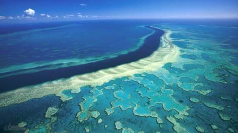 australia_barrera_arrecife_invertiran_4845864586458645.jpg