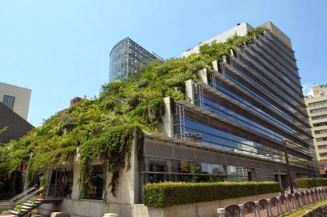 Qué-es-un-edificio-verde